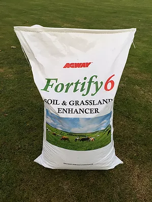 Fortify 6